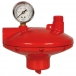 Pressure Regulator (102)