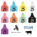Allflex Global Large Beef and Dairy Ear Tag (Numbered)