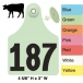 Allflex Super Maxi Beef and Dairy Ear Tag (Numbered)