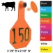 Y-Tex Medium Cattle (3 Star) (Numbered) 25/Bag