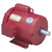 Leeson Farm Duty Hi-Torque Motor - Model 110088