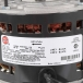 Hot Dawg Motor - HD60/HD75 - Close-Up View of Label