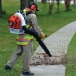 STIHL BR 550 Backpack Blower In Use