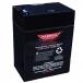 Parmak 6 Volt Gel Battery