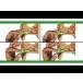 Moldex® Glide® Foam Twist-In Earplugs - Uncorded (Box of 100 Pair)