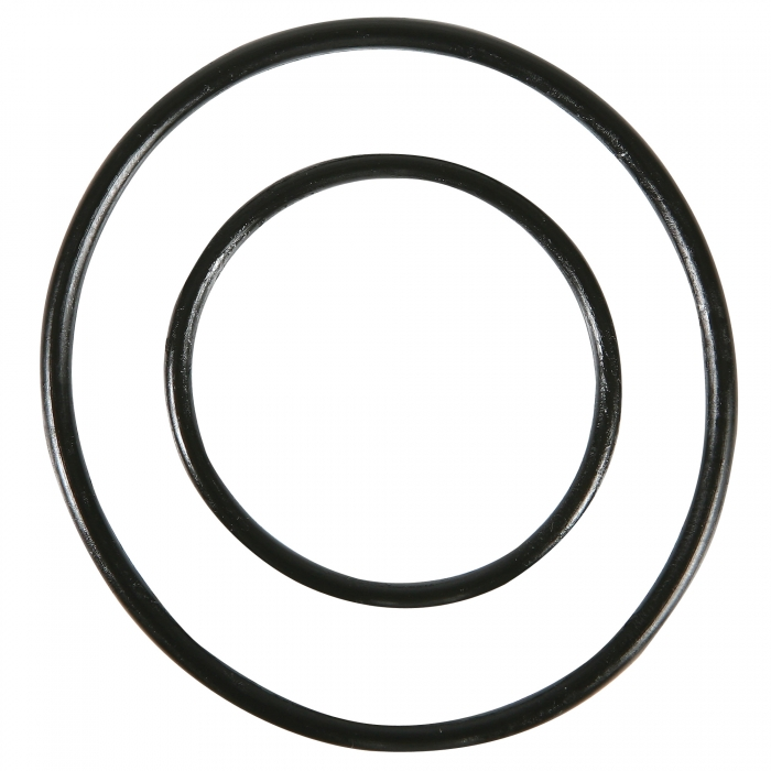 O-Rings for 2'' Spin Down Filter