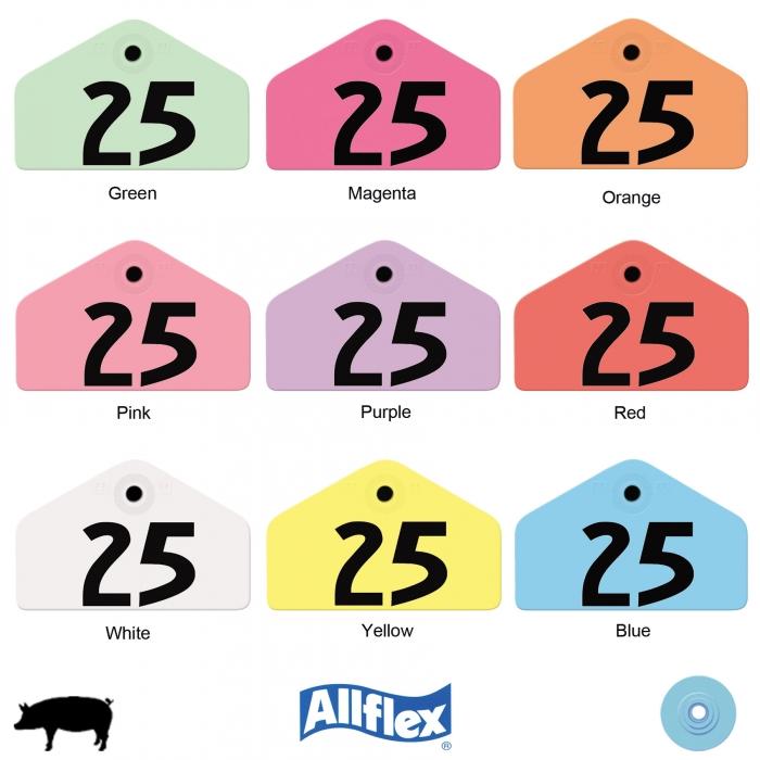 Allflex Global Hog Male Ear Tag (Numbered)