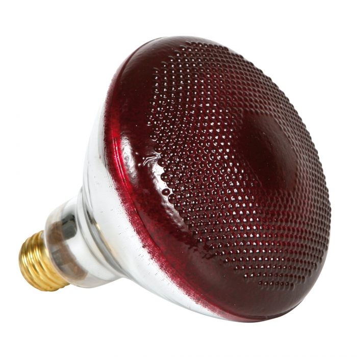 Infrared Heavy Duty Hard Glass Heat Bulbs 175 Watt Red Glass Qc Supply