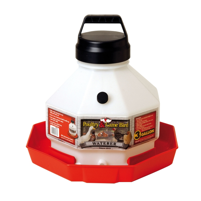Little Giant Plastic Poultry Waterer - 3 Gal.
