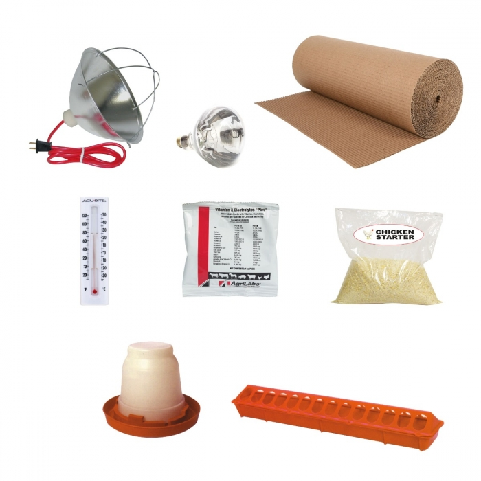 Starter Kit for Chicks - 25 Chick Kit