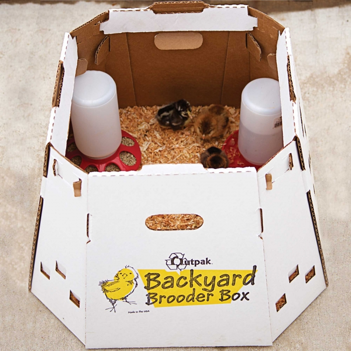 Outpak Backyard Brooder Box - 12 Chicks