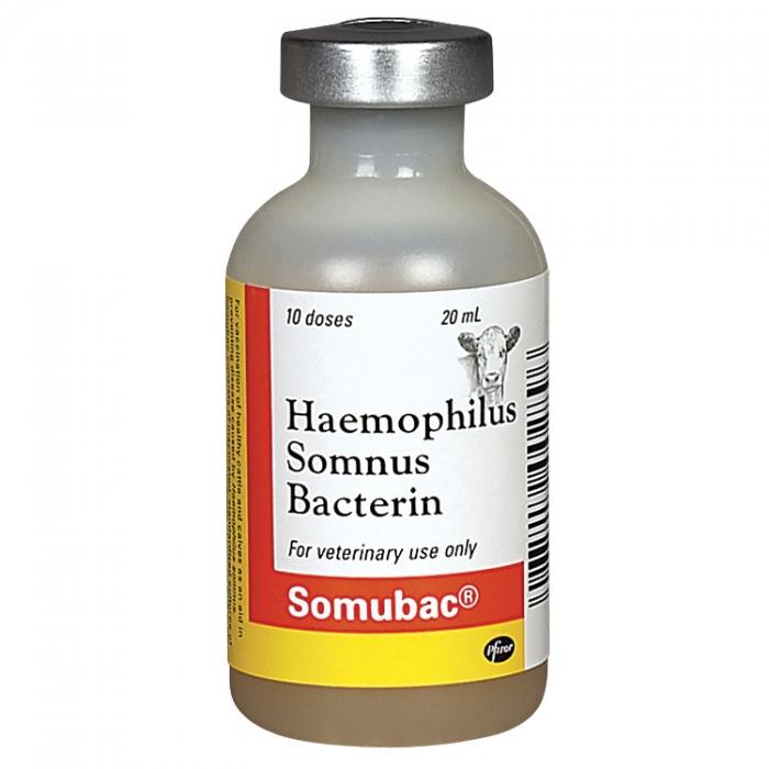 Somubac® - Zoetis