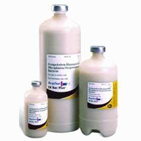 RespiSure-One/ER Bac Plus (Pfizer) - 250 Dose
