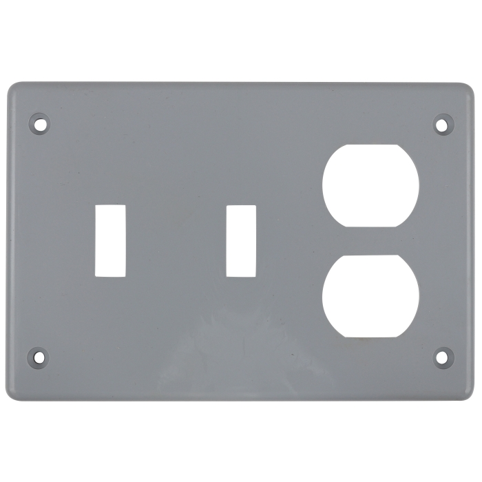 Double Switch Single Receptacle Cover
