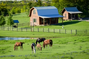 Guide to Starting a Small Farm Business