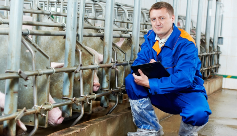 The Basics of Biosecurity Planning